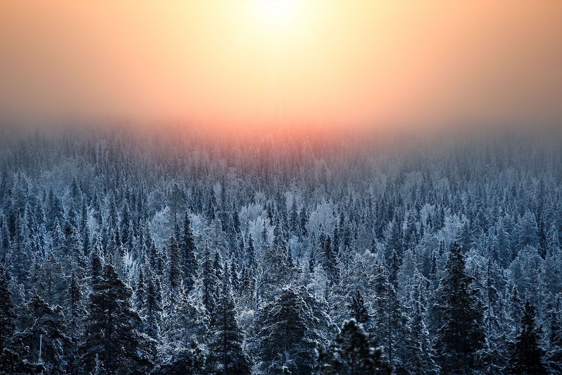 Schweden Lapland Natur